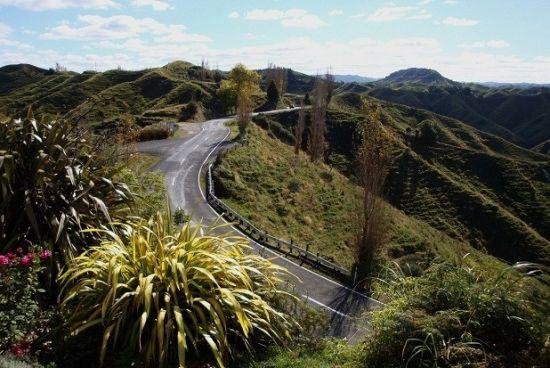 很难说为什么新西兰43号国道被称为遗忘的世界之路。这条位于北岛的公路地处偏远,历史不长,但沿途遍是未经破坏的绿色植被。事实上,路上唯一能路过的小镇,大约位于斯特拉特福德的入口处往东38英里处。