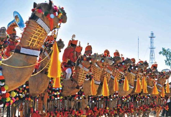 雄浑壮阔 亲历杰伊瑟尔梅尔骆驼节