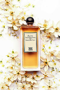 Shiseido卢丹诗。情艺花园 香水系列