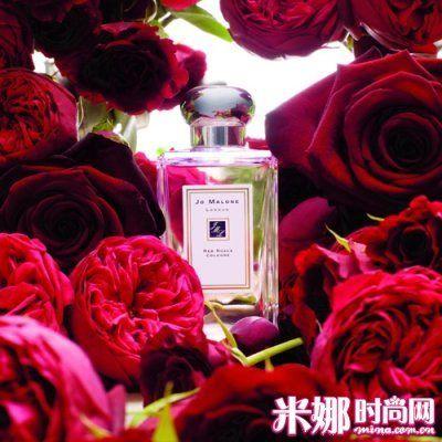 经典红玫瑰 花中最浪漫的华丽