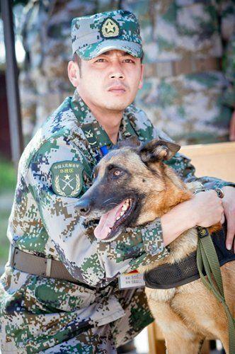 """《神犬奇兵》中""""神犬""""成爱狗人士大爱"""