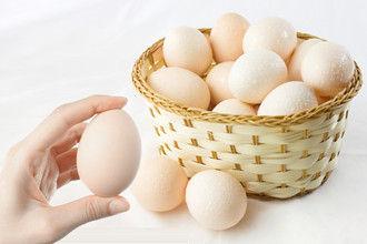 蛋价涨跌变化大 本月或再涨