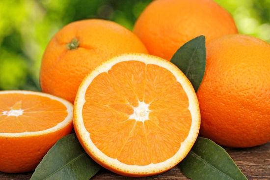 五个橘子简笔画图片